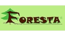 Acquisition de FORESTA par Baudoin de BROSSE appuyé par BFC Croissance et Mermoz Participations